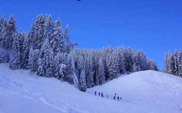 New Year ski holidays